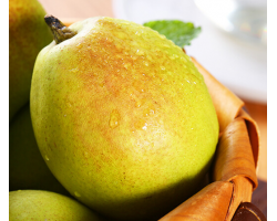 新疆库尔勒香梨 精选特级 单果120g以上 净重2.5kg 新生鲜水果