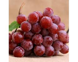 国产红提 葡萄/提子 500g装 新鲜水果