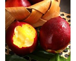 山东黄心油桃现货5斤新鲜水果应当季孕妇现摘脆甜大桃子整箱非水蜜桃果