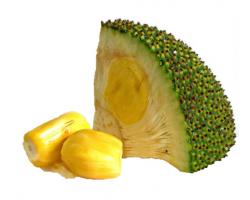 海南三亚新鲜水果菠萝蜜黄肉1个20-25斤/10-12.5kg