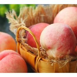 新鲜水蜜桃 京东生鲜桃子水果 新鲜桃子孕妇水果