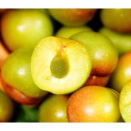 四川青红脆李5斤 半边红李子 茵红李脱骨空心李子 青李子 新鲜水果