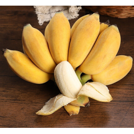广西小米蕉 新鲜香蕉芭蕉粉蕉糯米蕉