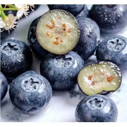 蓝莓鲜果 新鲜蓝梅水果大果 蓝莓